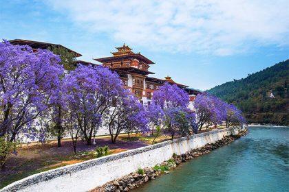 stunning Punakha Dzong best spot in Bhutan classic holiday packages